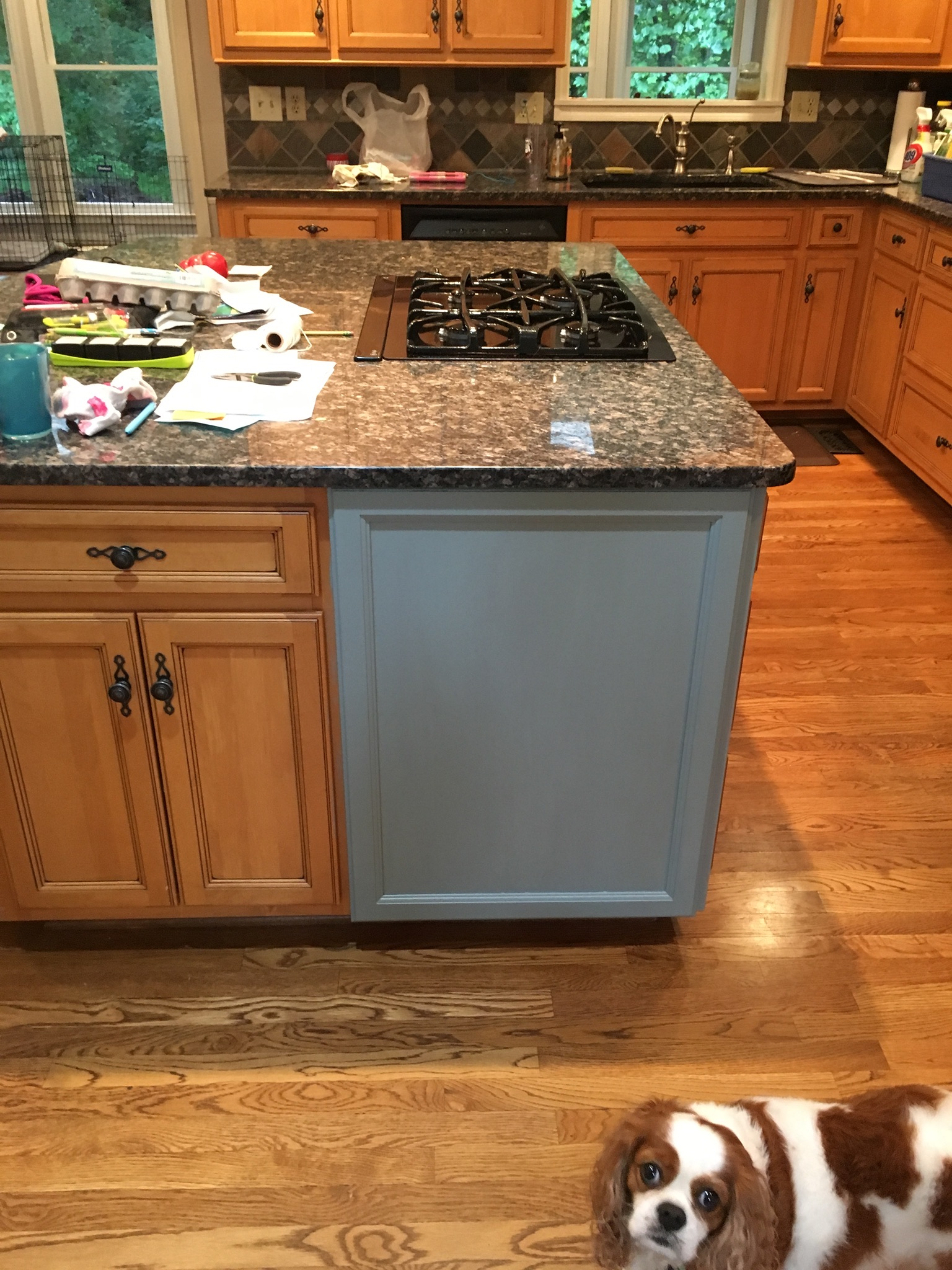 White Gel Stain Kitchen Cabinets