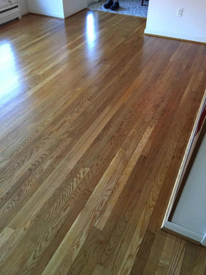 Flooring Finish With Pro Image Satin Finish General